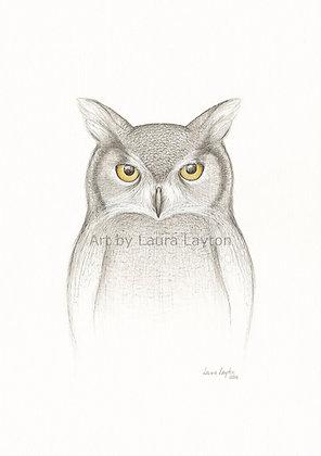Attitude Owl - Art Print