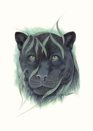 Panther - Art Print