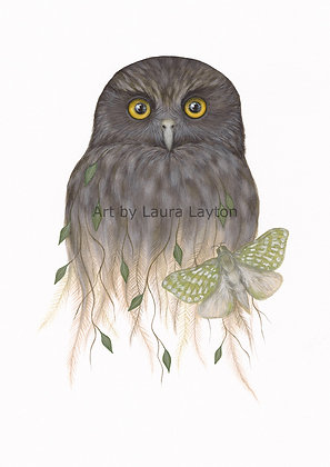 Morepork and Puriri Moth