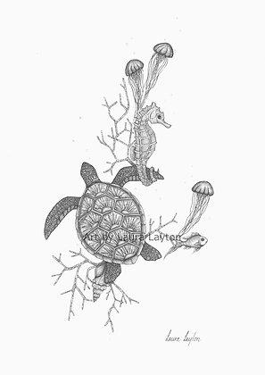 Sealife - Art Print
