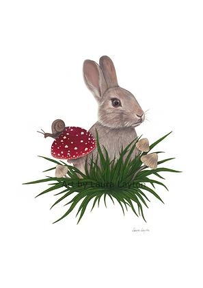 Rabbit and Toadstool - Art Print