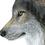 Thumbnail: Wolf Pack - Art Print