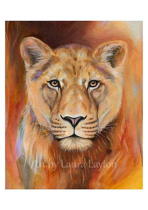 Lioness - Art Print