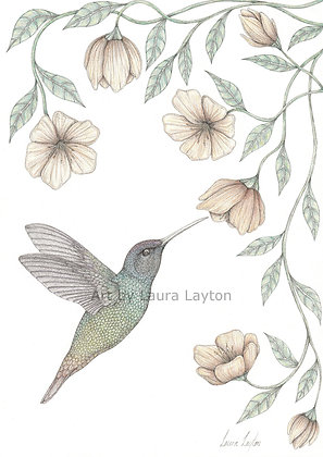 Hummingbird - Art Print