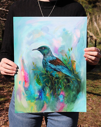 Colourful Tui