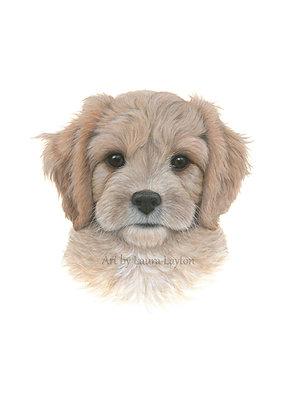 Puppy - Art Print