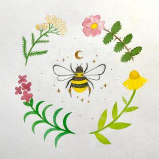 Pollinator Leadership Team 2020