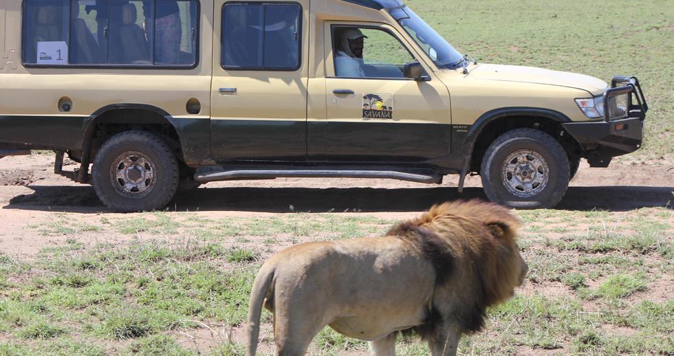 serengeti safari zanzibar (13).JPG