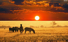 68664232-africa-wallpapers.jpg