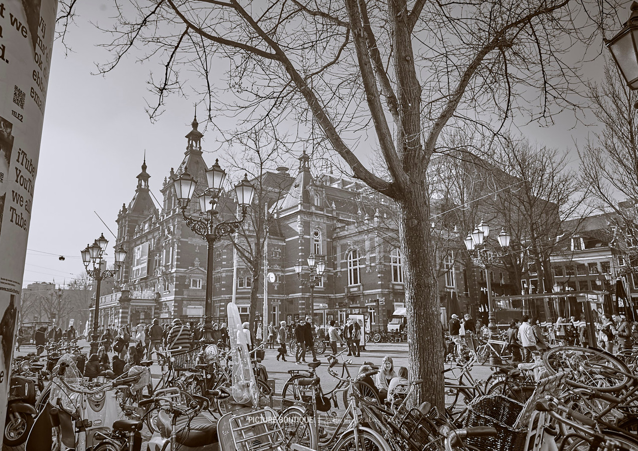 amsterdam-photographer-jeffery-berlin-gr