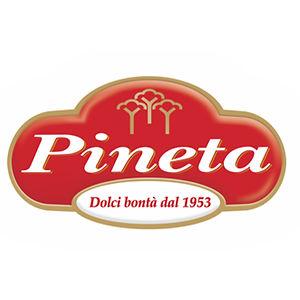 פינייטא