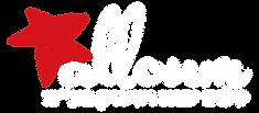 לוגו חברת סלום