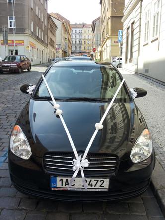 Svatba Průhonice