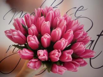 Svatba z tulipánů