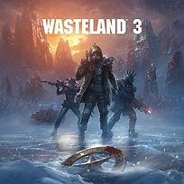 WASTELAND 3.jpg