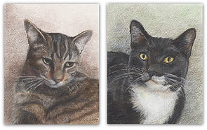 Drawing of cats