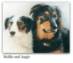 Pastel Drawing of Dogs