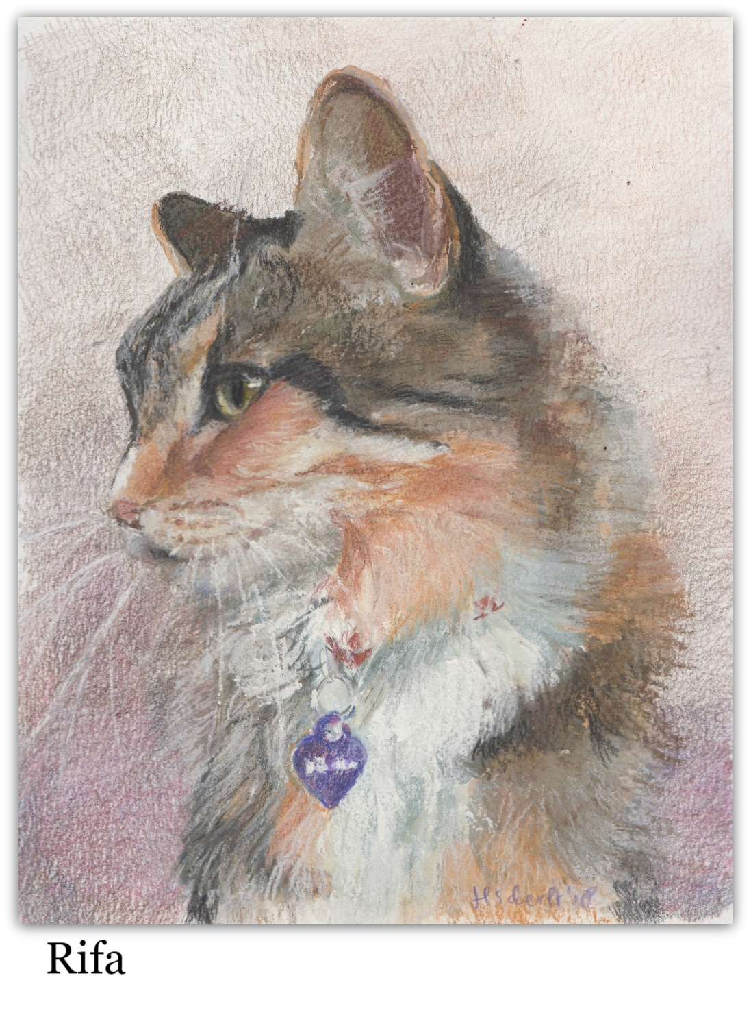 Drawing of cat