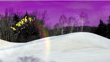 Snowboard Edit