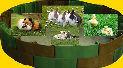 Small animal run. whelping box. Available in any size and colour, with our without a base.