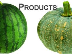 Watermelon & squash