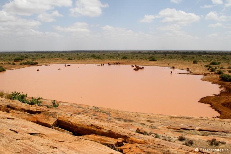 Simba_Village safari 002_marked