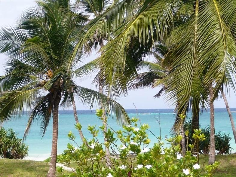 Simba_Village_beach_011