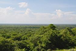 Simba_Village safari 003_marked