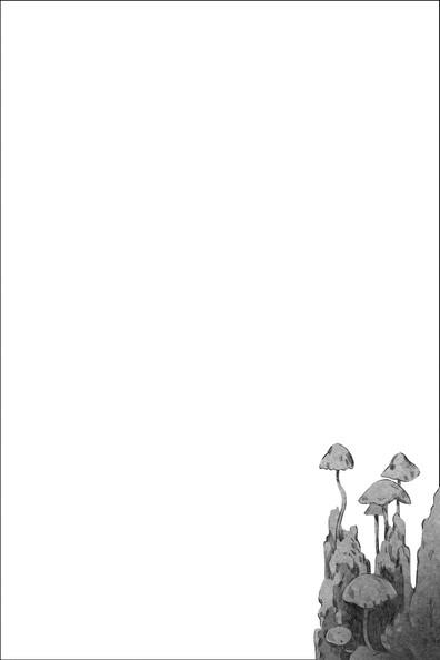 12 2.jpg