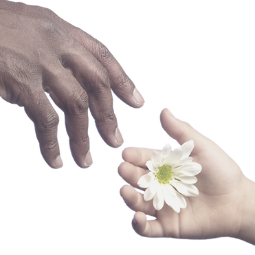 hands reaching out.png