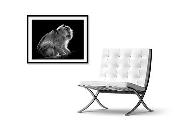 wall art next to chair
