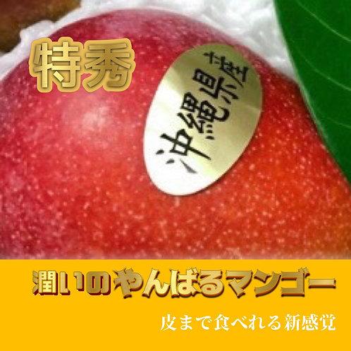 A.潤いのやんばるのマンゴー