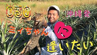 IMG_1161.JPG