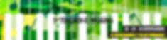 banner_web_rcgua2019-01.jpg