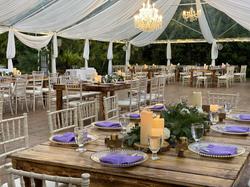 Beautiful Reception under tent