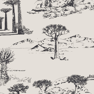 portes-du-desert-anthracite-1.jpg