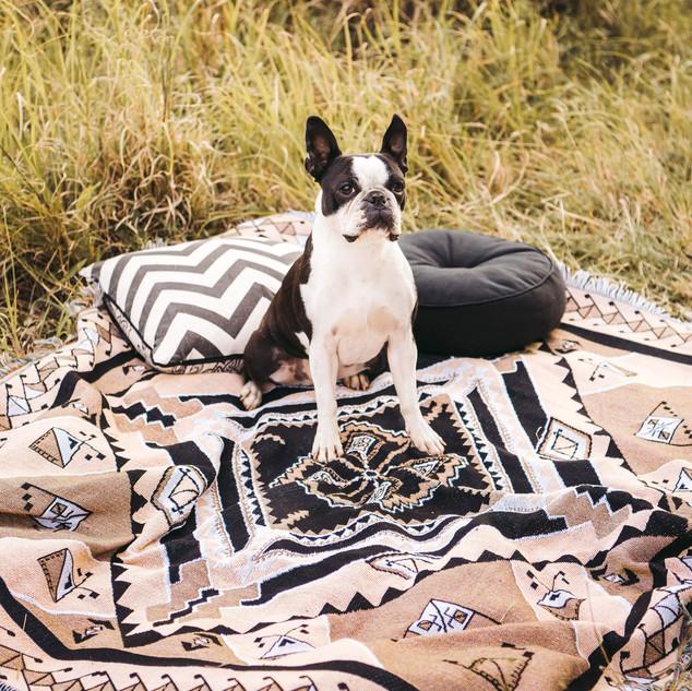 Nowhere Man picnic rug