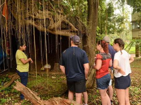 North Goa Cave Exploration Trip: Aug 2018