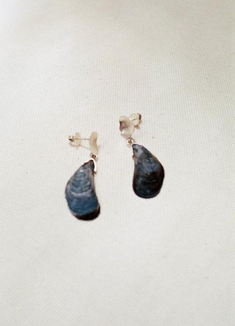 Mejillones Azules