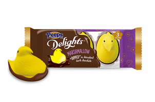 Marshmallow Dipped in Dark Chocolate