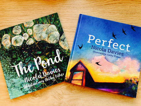 'The Pond' & 'Perfect': Tackling Difficult Topics with Picture Books