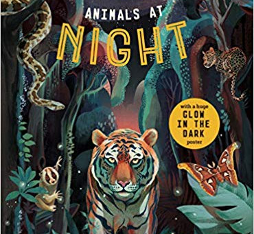 Review: Animals at Night