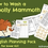 Thumbnail: 'How to Wash a Woolly Mammoth' Planning Pack (Download)