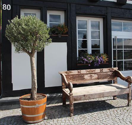 Restaurant Sonne Wildtal Gundelfingen bei Freiburg im Breisgau Terrasse Wurstsalat wandern
