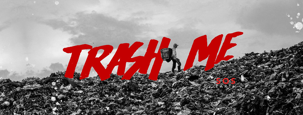 trash me cover copy.jpg