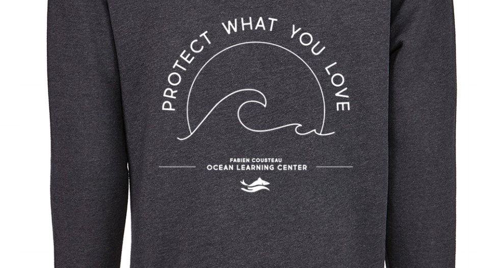 Protect What You Love (Unisex) Hoodie