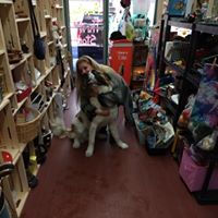 Gena and dog.jpg