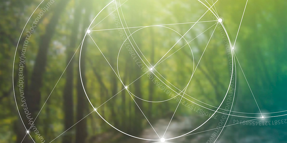 Earths Light Guided Meditation with SOUND  (Saturday Session)