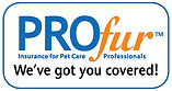 Winnipeg dog daycare, dog boarding, and dog training facility