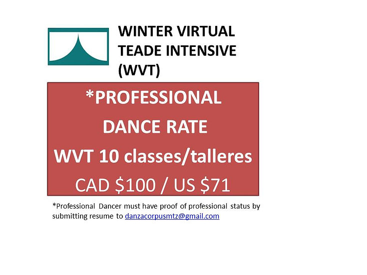 WVT - 10 Classes - Professional Rate